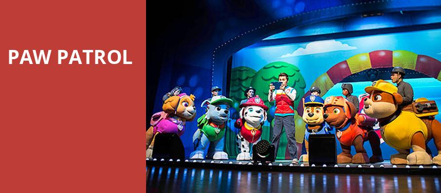 Paw Patrol, Au Rene Theater, Fort Lauderdale